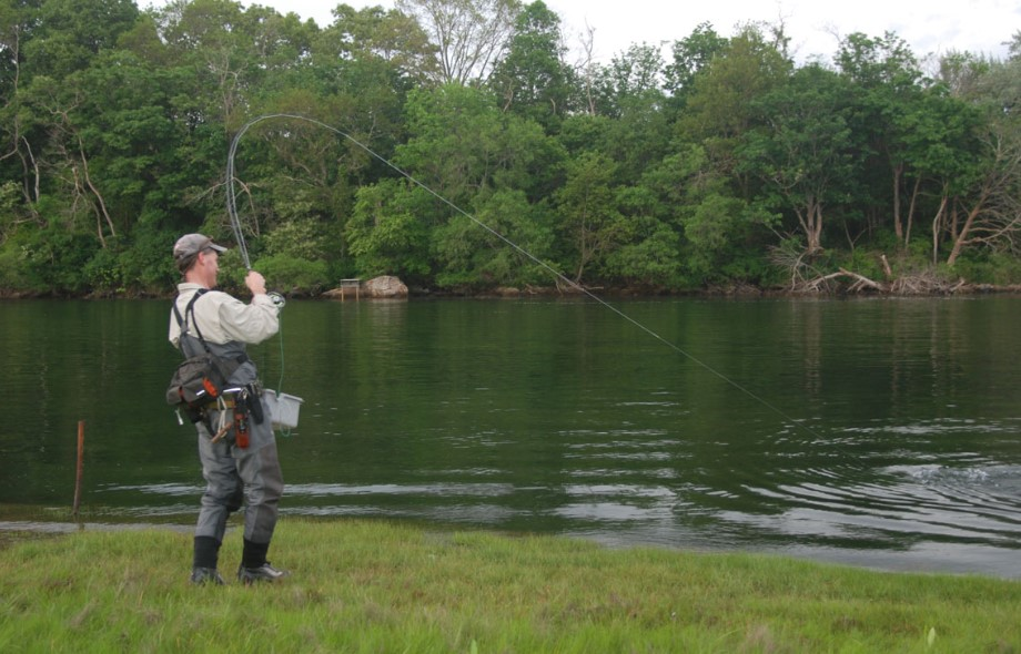 5 Easy Tips to Do to Fish in the River